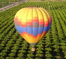 summer adventure: hot air balloon ride